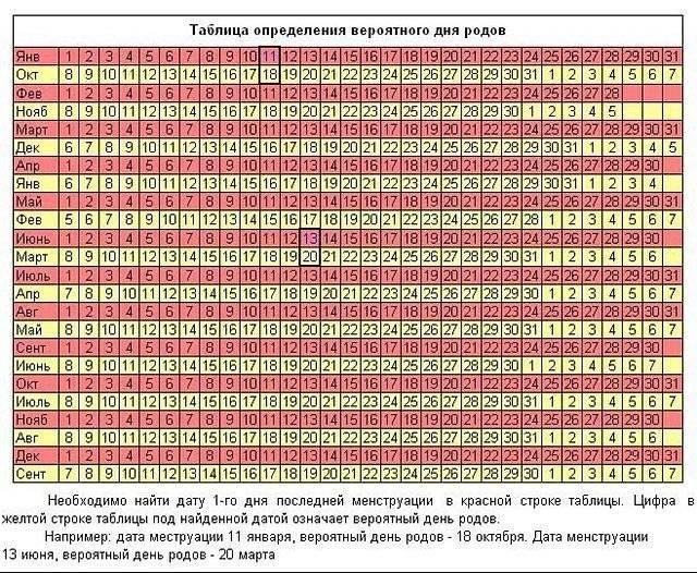 Как посчитать срок беременным