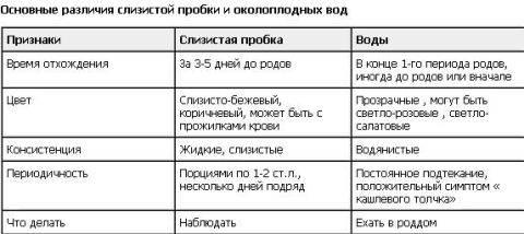 slizistaya-probka-vlagalishe