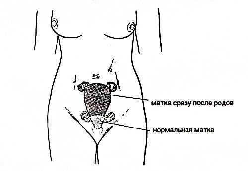 lesbiyanki-kitayanki-lizhut-vlagalishe
