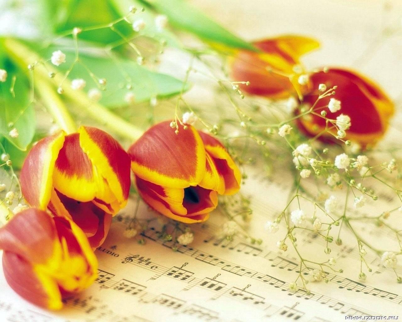 Поздравления с годовщиной свадьбы трогательные в стихах